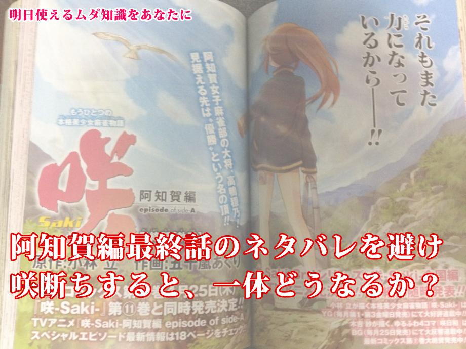 サキビアの泉_01阿知賀編最終話のネタバレを避けて咲断ちするとどうなるか?